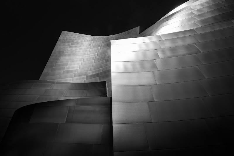 Walt Disney Concert Hall di Cosimo Ignesti