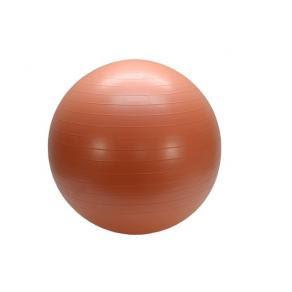 Balans/pilates boll 55 cm