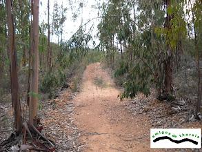 Photo: Seguimos por el camino forestal, que pasa por detrás de la casa.