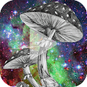 Mushroom Animated Wallpaper