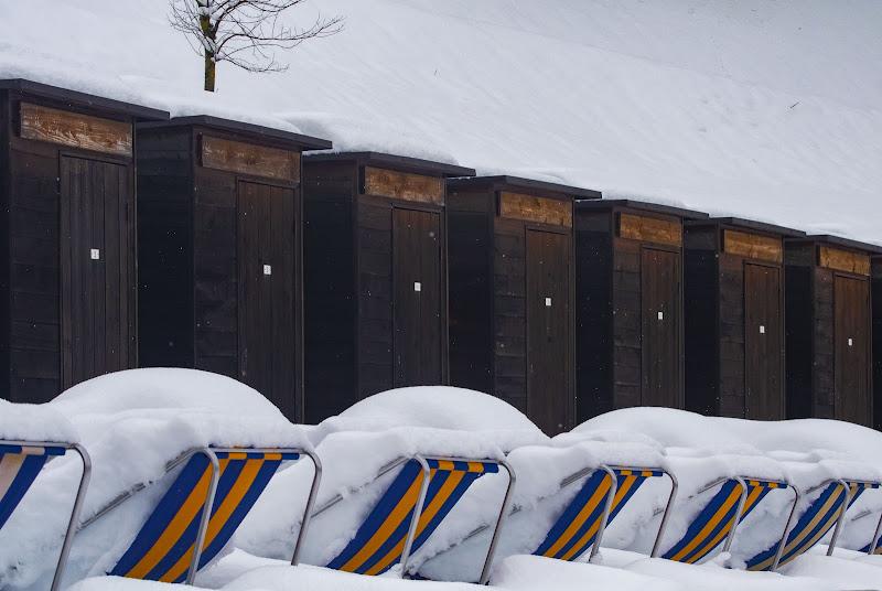 la neve improvvisa di PaolaPlinia