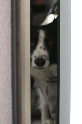Quando apri la porta... di Mimmukkia