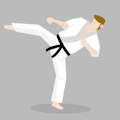 Taekwondo Teacher Pro