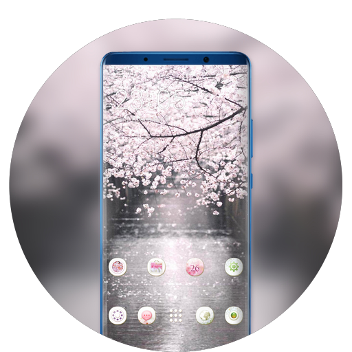 Theme for blossom cherry spring wallpaper icon