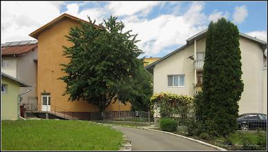 Photo: Cires (Prunus avium)  - Turda,  Aleea Plopilor, Nr.7, Gradinita sociala - 2019.05.30