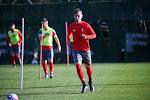 Standard stalt aanvaller in Italiaanse Serie A