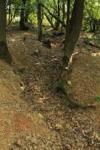 """Photo: A csúcson még a középső-triász karbonátplatformon képződött Steinalmi Mészkő Formáció rétegei bukkannak elő, de az árokban lefelé haladva egyre fiatalabb és mélyebb vízben képződött kőzetek tárulnak fel (""""dunnatetői mészkő"""", """"bódvalenkei mészkő"""", """"szárhegyi radiolarit"""")"""