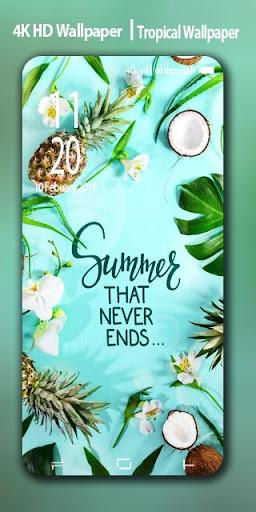 Tropical Summer Wallpaper : tropical, summer, wallpaper, Beautiful, Background, Summer, Tropical, Wallpaper