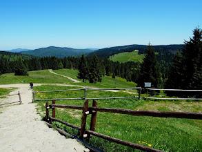 Photo: Z Turbacza kierujemy się kierunku Jaworzyny Kamienickiej na wisienkę dzisiejszej wyprawy czyli zielony na Gorc.