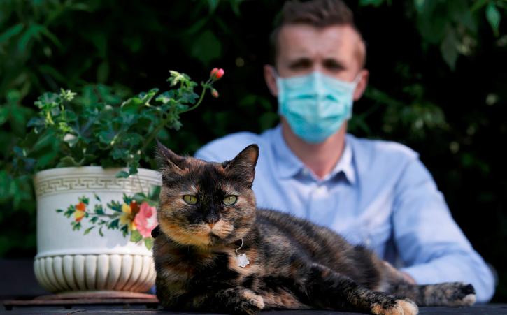 Feline good -French cat survives coronavirus infection