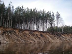 Photo: poprzewracało się kilka drzewek