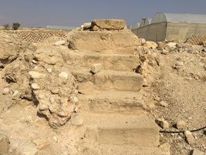 Photo: חממות בשטח ארוננו של הורדוס