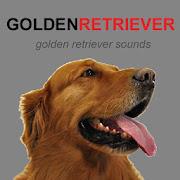 Golden Retriever Dog Sounds