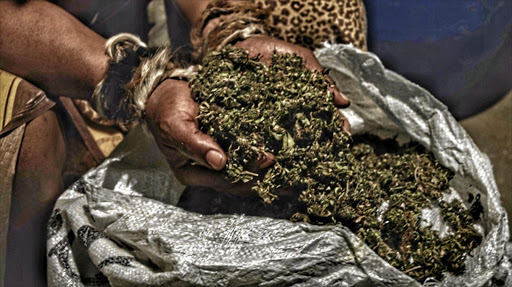 Killing the economic lifeblood of the Eastern Cape's weed