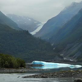 Glacier Lake  by Patricia Phillips - Landscapes Travel