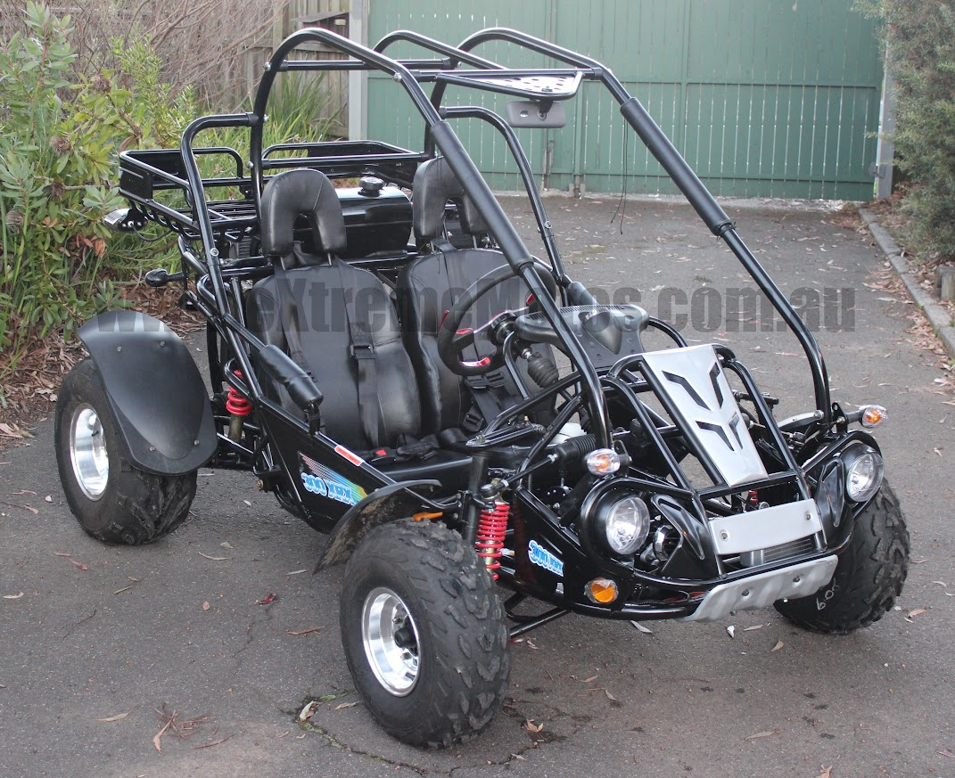 300cc XRX Trailmaster Hammerhead Twister SS Go Cart Offroad Dune Buggy
