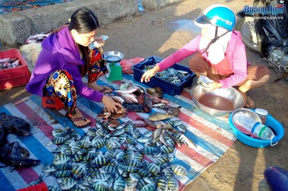 Chợ cá sáng tại cầu cảng Lý Sơn chỉ diễn ra trong khoảng 2 giờ đồng hồ.