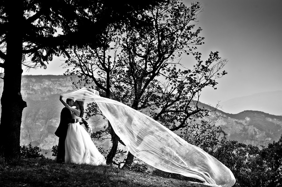 Wedding photographer Luigi Rota (rota). Photo of 10.01.2014