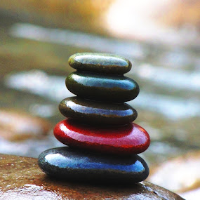 Ascending and descending...... by Nelson Thekkel - Artistic Objects Other Objects ( red, stone, gangets, rishikesh, black,  )