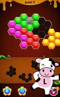 Hexaa Extreme Puzzle - náhled