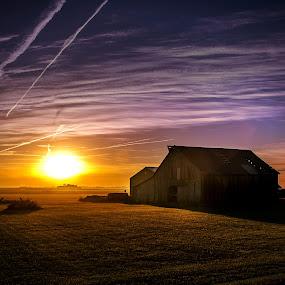 Sunrise On The Farm by T Sco - Landscapes Prairies, Meadows & Fields ( farm, barn, land, cornbelt, sunrise, daybreak, prairie, farming, country,  )