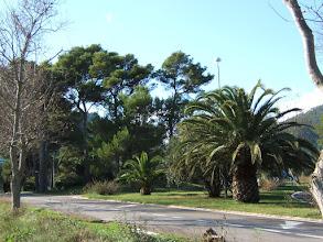 Photo: Die Einfahrt nach Canyamel/ Mallorca ( Viele Mallorca-Infos unter www.mallorca-ganz-privat.de )