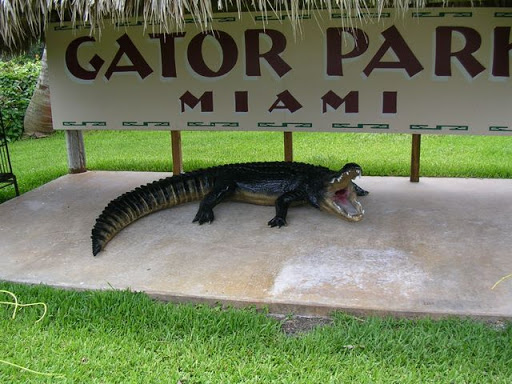Gator Park Miami