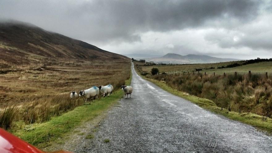 donegal wild atlantic way road