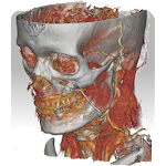 DroidRender - 3D DICOM viewer 3.8.1