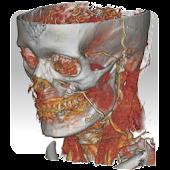 DroidRender - 3D DICOM viewer