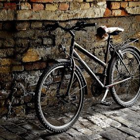 Deserved break by Zoran Nikolic - Transportation Bicycles ( bicycles )
