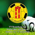 V.V. Rozenburg icon