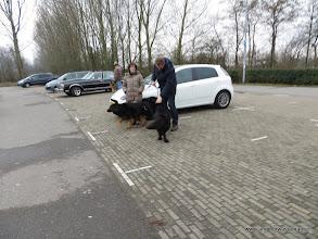 Photo: Bewogen..... hier zien we Barchiël-Souris en Angel's neef Balou vom Alt Deutschen Eck