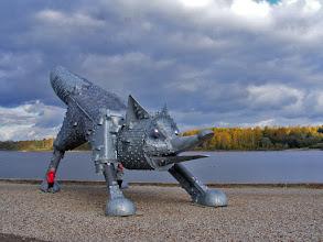 Photo: Lapė – Talšos ežero sergėtoja