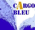 Cargo Bleu : lieu d'exposition, de création et d'ateliers d'artistes locaux