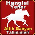 HangisiYener Ganyan icon