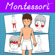 Parts of the Human Body - Montessori Anatomy