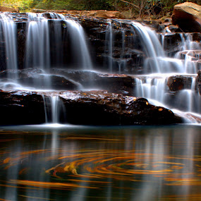 Circle Falls by Kevin Frick - Landscapes Waterscapes ( autumn, west virginia, swirl, waterfall, leaves,  )