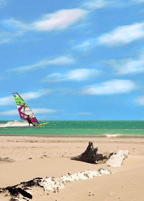 Giocare con il vento di Aldo Rizzardi