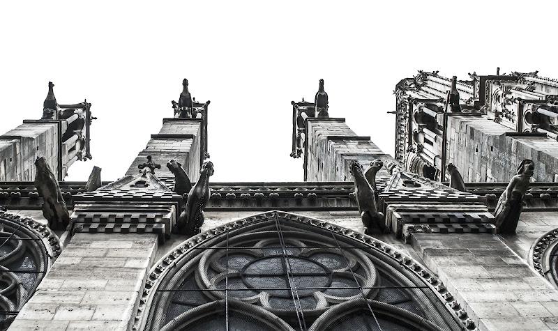 Notre Dame de Paris di Marta