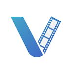 VASSET Icon