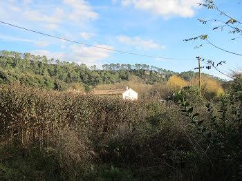 terrain à Méounes-lès-Montrieux (83)