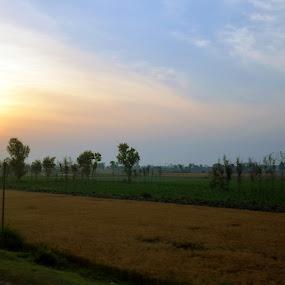 Sun Rise by Umair Nayab - Landscapes Sunsets & Sunrises ( field, sky, weather, scenery, sunrise )