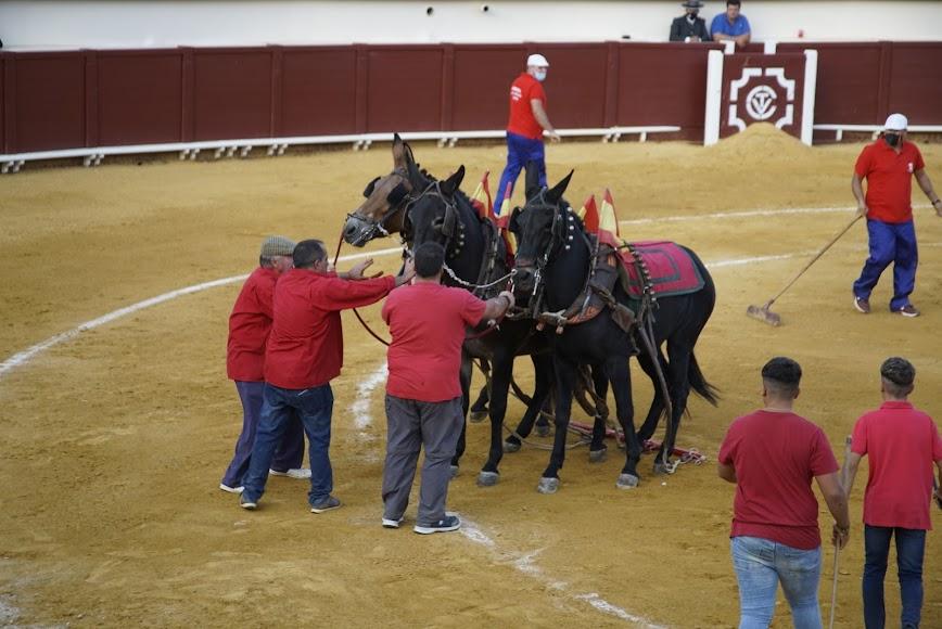A escena los caballos.