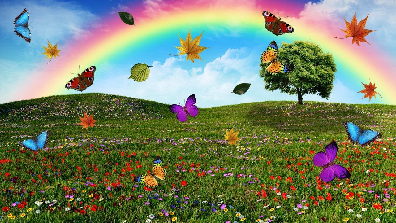 Opciones binarias estrategia de arco iris de media móvil exponencial