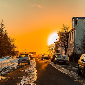 Street by Edvald Geirsson - City,  Street & Park  Street Scenes ( houses, iceland, winter, reykjavik, cars, sunset, snow, street, trees,  )
