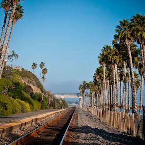by Jeff Yarbrough - Transportation Trains