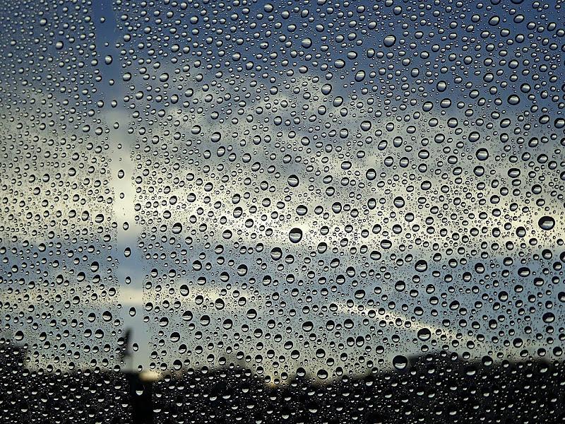 Alla finestra di Dariagufo