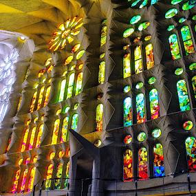 Vitrals by Rui Quinta - Buildings & Architecture Other Interior ( vitral, sagrada familia, barcelona, spain,  )