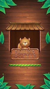 Falling Puzzle 1
